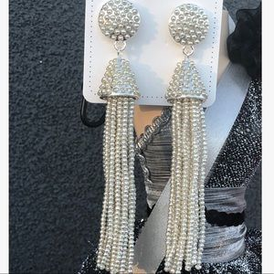 Beautiful Beaded Drop Earrings Silver Base